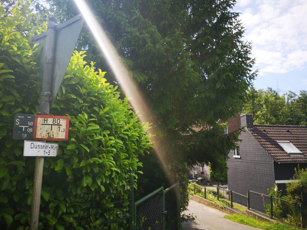 Die Düsseler Mühle
